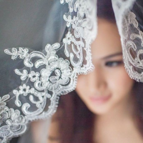 Wedding Veil with Elegant Floral Embroidery (3m)