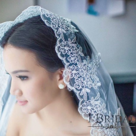 Wedding Veil with Gorgeous Floral Embroidery (3m)