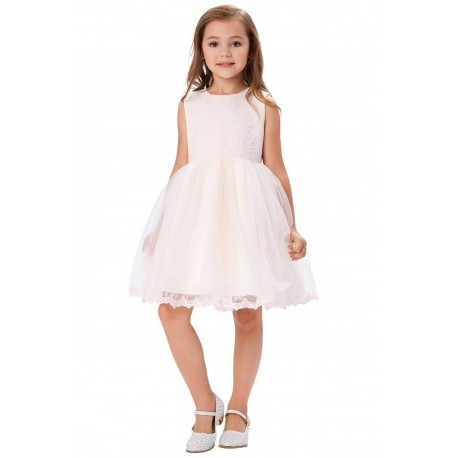 Embroidered Sleeveless Lace Pale Pink Flowergirl Dress Fashion